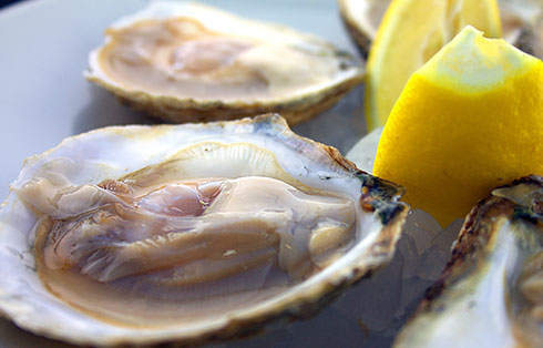 Galician oysters (6 units)